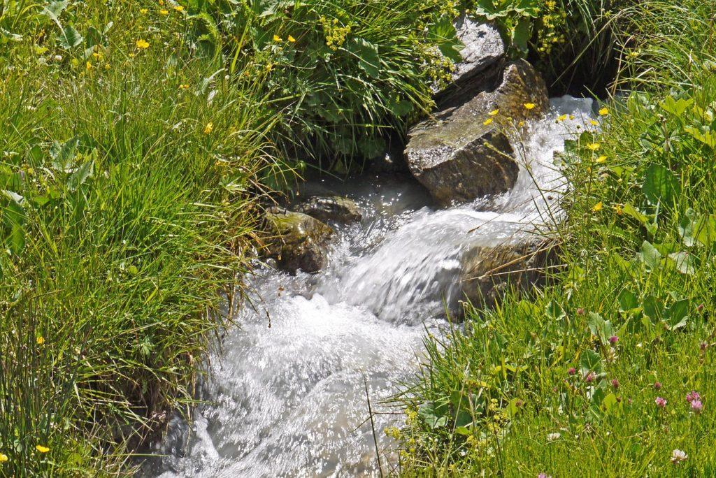 Mountain Source Meadow Alm Stones  - hpgruesen / Pixabay