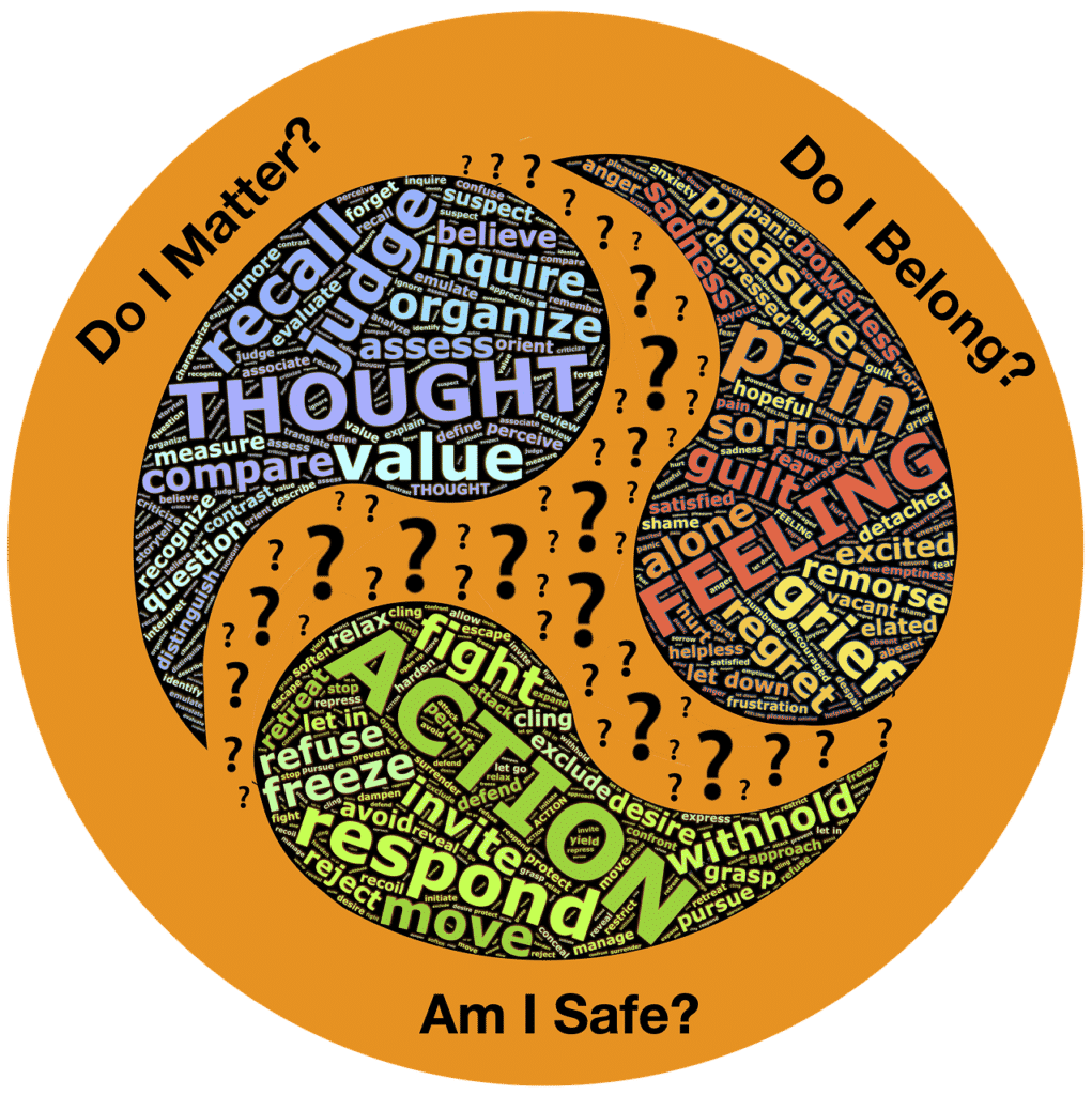 Thought Feeling Action Experience  - johnhain / Pixabay