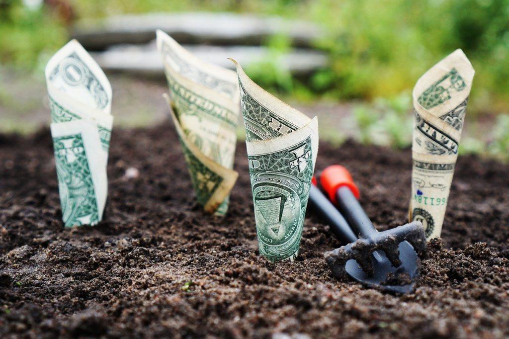 Money Grow Interest Save Invest  - TheDigitalWay / Pixabay